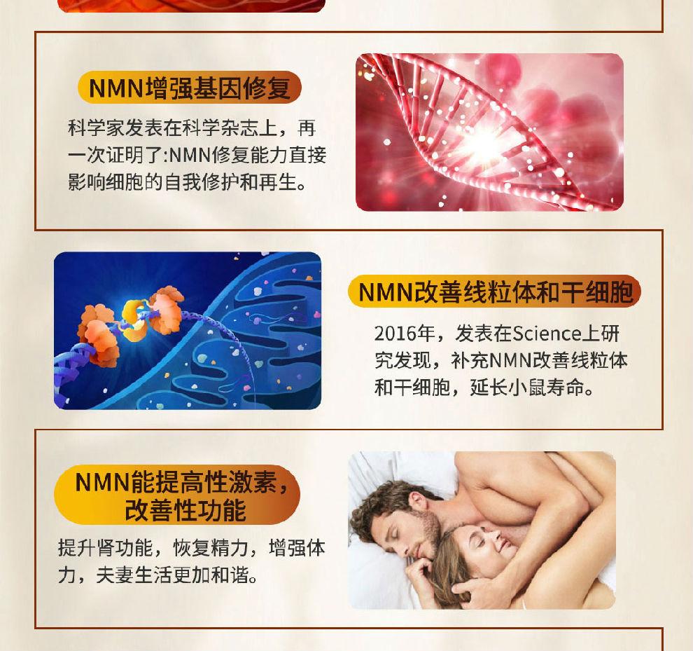 NMN15000-JPG_10.jpg