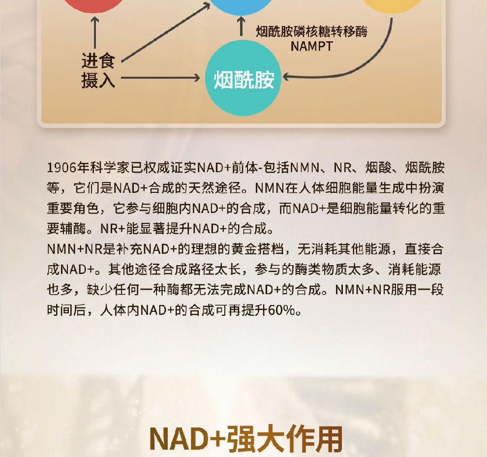 NMN15000-JPG_13.jpg